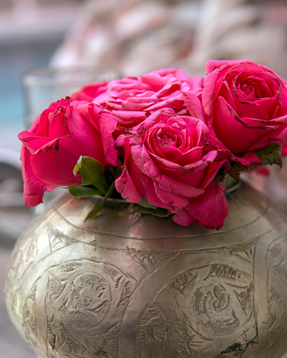 Marrakech - Roses